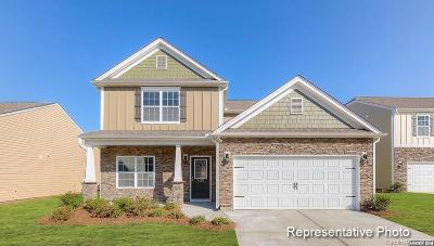 Cabarrus County Single Family Home For Sale: 2392 Pixie Court SW