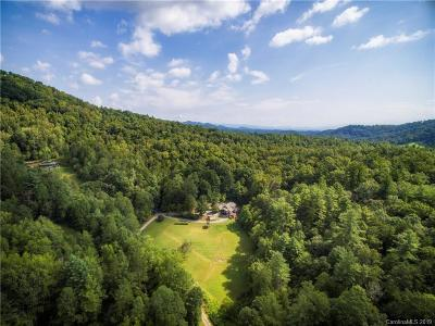Leicester NC Single Family Home For Sale: $735,000