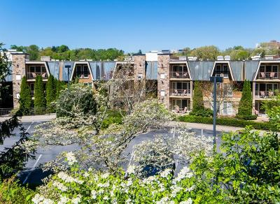 Asheville Condo/Townhouse For Sale: 331 Bowling Park Road