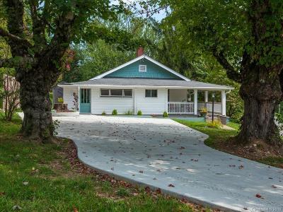 Asheville Single Family Home For Sale: 157 Starnes Cove Road