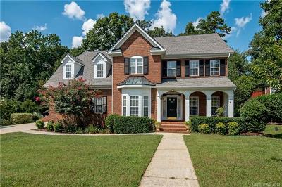 Charlotte Single Family Home For Sale: 9111 Holly Hill Farm Road