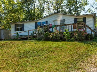 Asheville Single Family Home For Sale: 32 E Starnes Cove Road #2