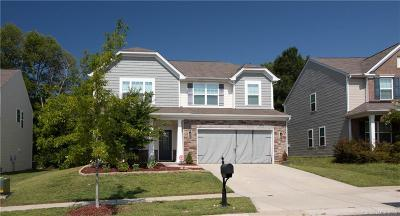 Mecklenburg County Single Family Home For Sale: 7215 Agnew Drive