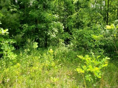 Haywood County Residential Lots & Land For Sale: 42 Bernies Trail