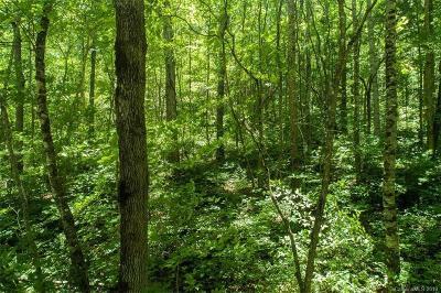 Residential Lots & Land For Sale: Lot #2 Cedar Creek Farm Road #2