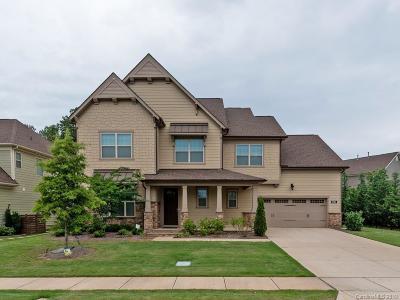 Charlotte Single Family Home For Sale: 16914 Luvera Lane
