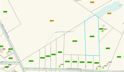 Residential Lots & Land For Sale: Lot 2 Christopher Road #2