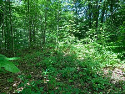 Leicester Residential Lots & Land For Sale: 11 Little Creek Court #52