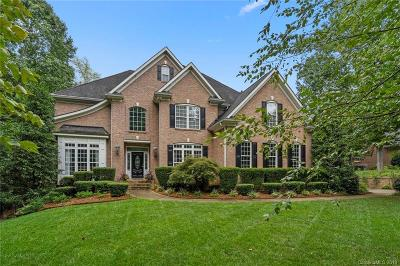 Rock Hill Single Family Home For Sale: 1491 Jack White Drive
