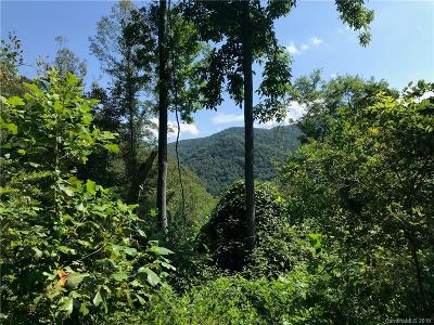 Residential Lots & Land For Sale: 9999 Paint Fork Road