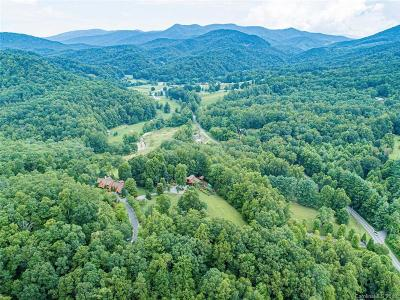 Fairview NC Residential Lots & Land For Sale: $2,835,000
