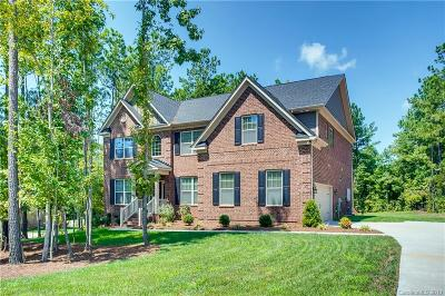 Clover, Lake Wylie Single Family Home For Sale: 3103 Foggy Hollow Lane