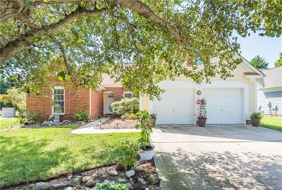Charlotte Single Family Home For Sale: 9312 Bacardi Court