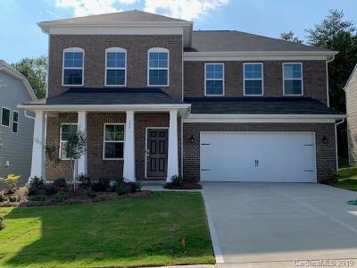 Clover Single Family Home For Sale: 157 Alden Oaks Street #LOT 4