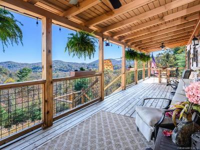 Saluda Single Family Home For Sale: 174 Big Raven Lane