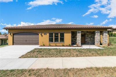 Asheville Single Family Home For Sale: 35 Ocaso Drive