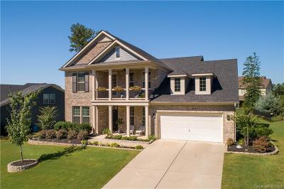 Fort Mill Single Family Home For Sale: 890 Tyne Drive