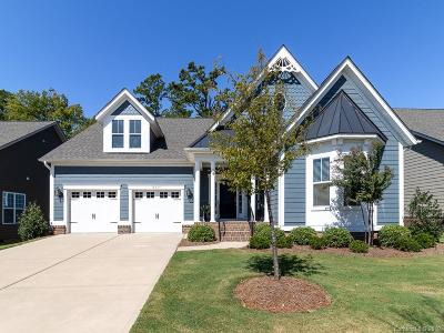Huntersville Single Family Home For Sale: 16037 Oxford Glenn Drive
