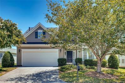 Fort Mill Single Family Home For Sale: 861 Platinum Drive