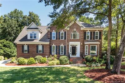 Charlotte Single Family Home For Sale: 12556 Overlook Mountain Drive