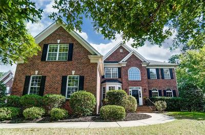 Waxhaw Single Family Home For Sale: 8507 Quellin Drive