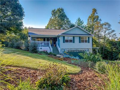 Weaverville Single Family Home For Sale: 38 Rabbit Ridge Drive