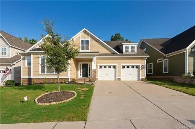 Tega Cay Single Family Home For Sale: 1042 Cameron Creek Parkway