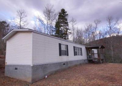 Brevard Single Family Home For Sale: 165 Stamey Creek Road