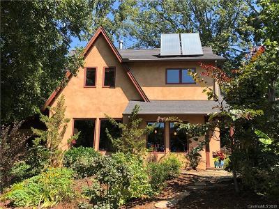 Asheville Single Family Home For Sale: 6 Williams Street