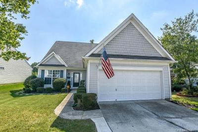 York County Single Family Home For Sale: 301 Tradition Way