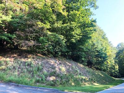 Hendersonville Residential Lots & Land For Sale: 24 Falls Lane #391
