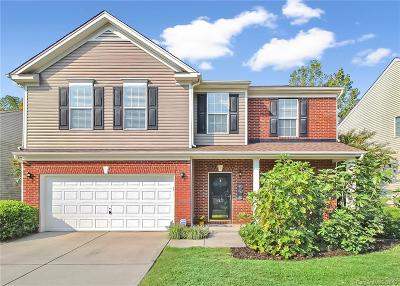 York County Single Family Home For Sale: 7632 Black Hawk Lane