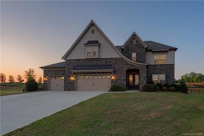 Fort Mill, Rock Hill Single Family Home For Sale: 316 Corner Lake Court