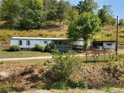 Weaverville Single Family Home For Sale: 119 Chandler Branch Road
