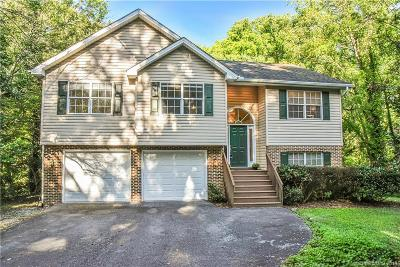 Asheville Single Family Home For Sale: 13 Chunns View Drive