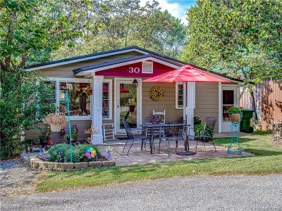 Asheville Single Family Home For Sale: 30 Vista Street