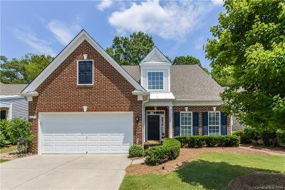 Charlotte Single Family Home For Sale: 8625 Annabel Lee Lane