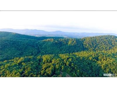 Burke County, Caldwell County, Watauga County, Avery County, Ashe County Residential Lots & Land For Sale: OFF Tom Dula Road