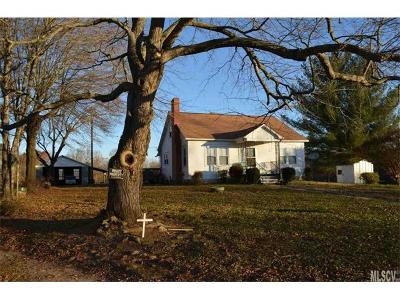 Alexander County, Caldwell County, Ashe County, Avery County, Watauga County, Burke County Single Family Home For Sale: 378 Hendren Lane