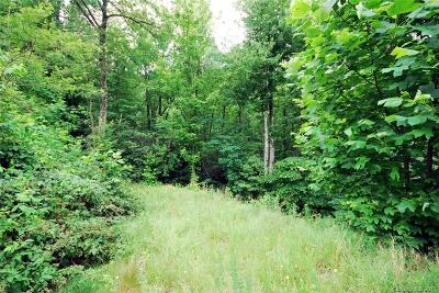 Brevard Residential Lots & Land For Sale: 23 Kelly Mountain Road #23