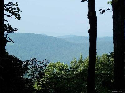 Hendersonville Residential Lots & Land For Sale: 54 Armour Court Court #20