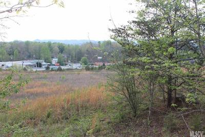 Caldwell County Residential Lots & Land For Sale: Hickory Blvd