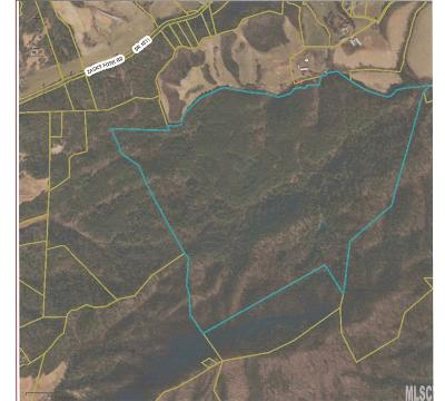 Caldwell County Residential Lots & Land For Sale: Grandin Rd