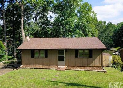Alexander County, Caldwell County, Ashe County, Avery County, Watauga County, Burke County Single Family Home For Sale: 247 Michaels Gap Ln