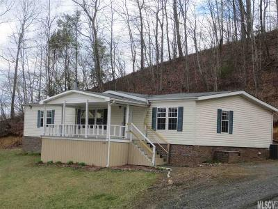 Ashe County Single Family Home For Sale: 17044 Nc Hwy 194 S