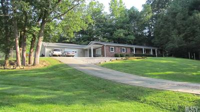 Alexander County, Caldwell County, Ashe County, Avery County, Watauga County, Burke County Single Family Home For Sale: 2130 Vashti Rd