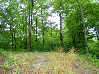 Franklin, Otto Residential Lots & Land For Sale: Lot 19 Elkhorn Ridge Drive