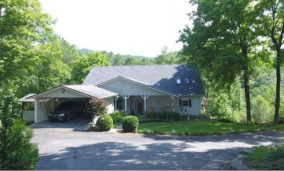 Franklin Single Family Home For Sale: 678 Middle Burningtown Rd.