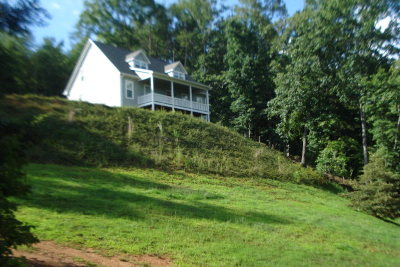 Franklin Single Family Home For Sale: 311 Red Oak Road