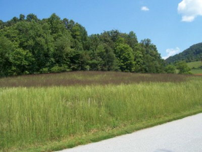 Sunset Mountain Estates Residential Lots & Land For Sale: 000 Autumn Trail